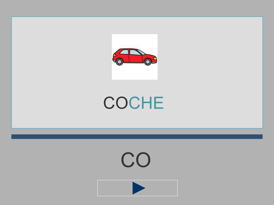 COCHE CO