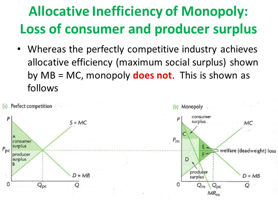 Inefficiencies of Monopolies