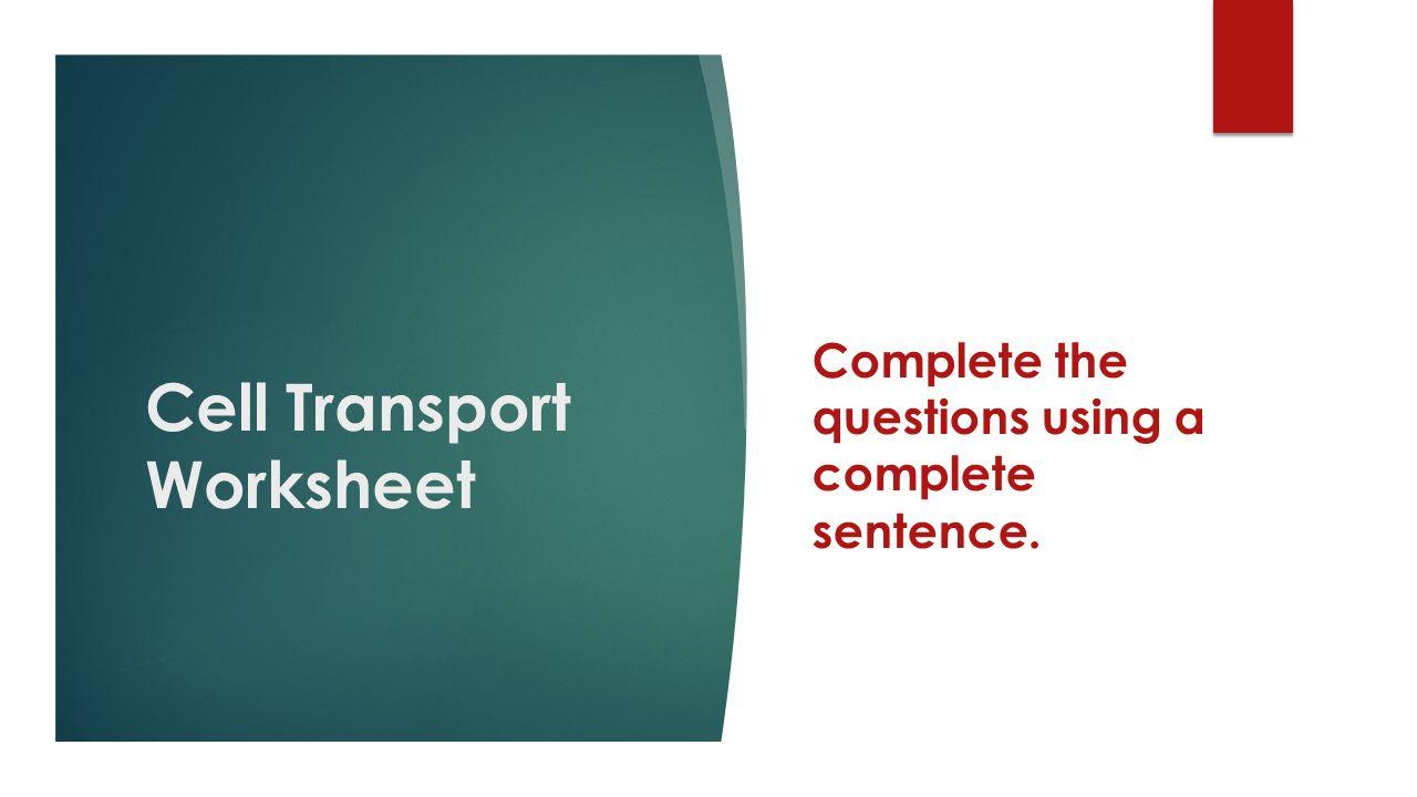 All Grade Worksheets Transport In Cells Worksheet All Grade – Transport in Cells Worksheet