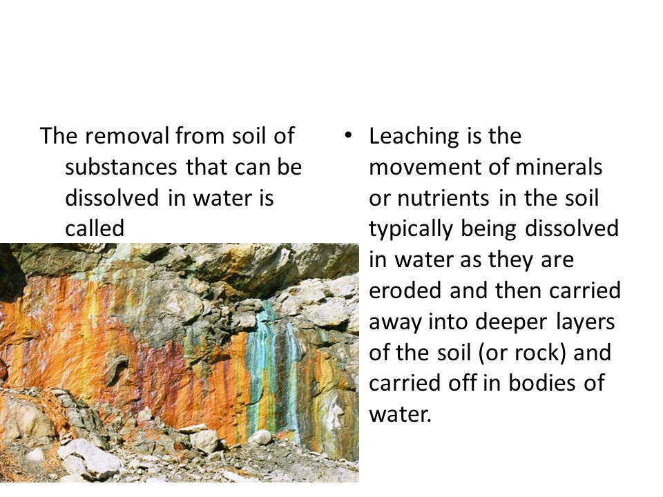 Final review ppt download for What substances are in soil