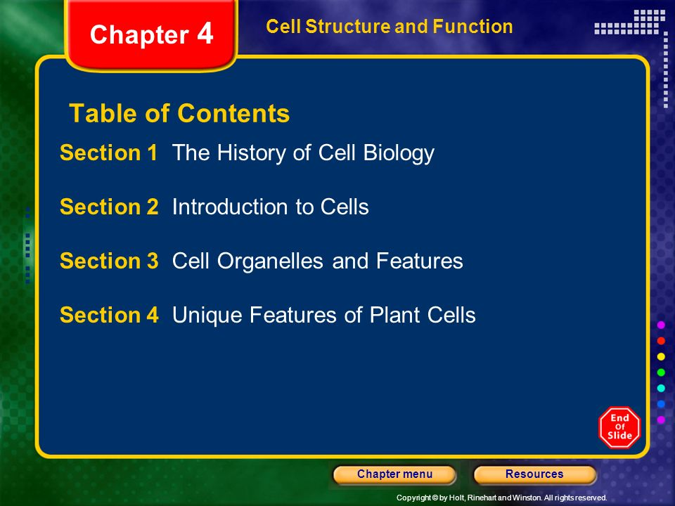 Chapter 4 Table Of Contents Section 1 The History Of Cell Biology