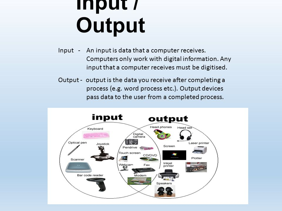 input output devices in aviation essay Ase study: input output devices in aviation ase study: input output devices in aviation ase study: i need help to write an essay for essays writer.