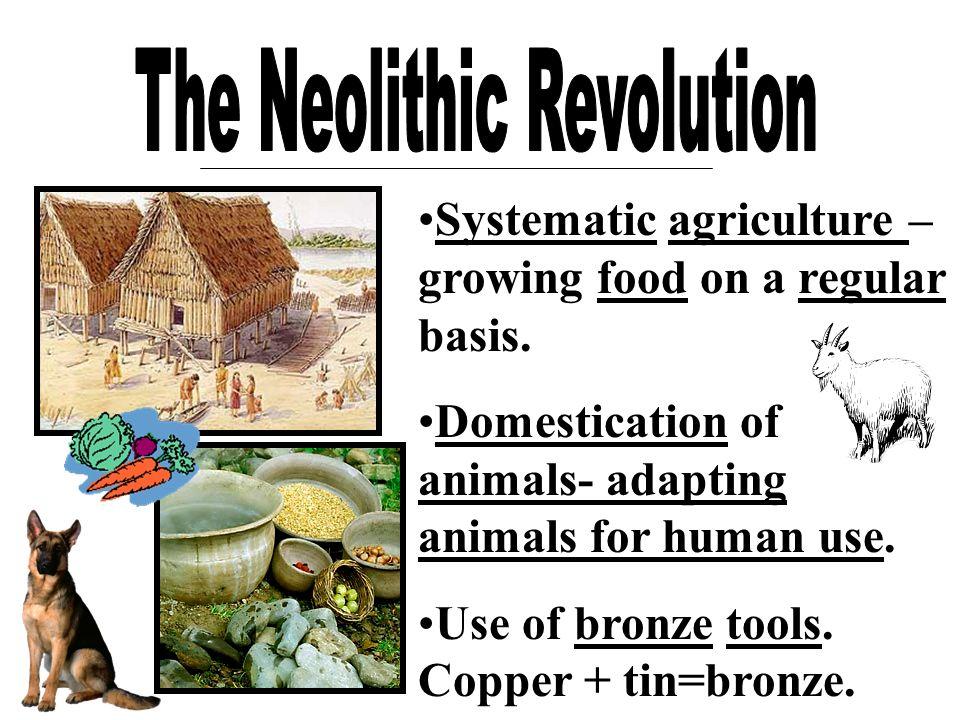 The Neolithic Revolution The Neolithic Revolution