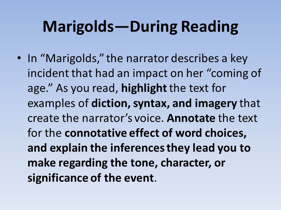 marigolds paragraph Essays from bookrags provide great ideas for marigolds (short story) essays and paper topics like essay view this student essay about marigolds (short story.