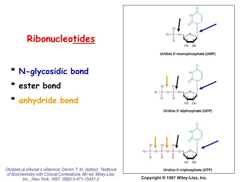 N Glycosidic Bond Metabolism of purines ...