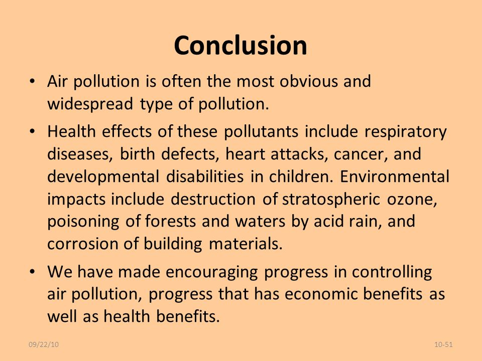 long essay on pollution
