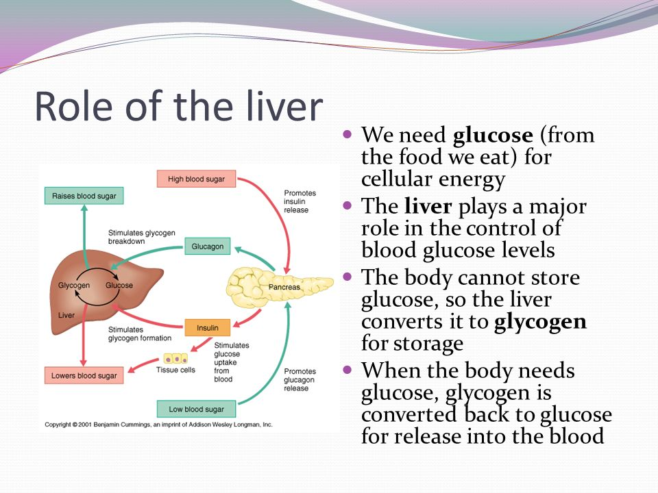 Homeostasis Of Blood Sugar Breathing And Blood Pressure Ppt Video