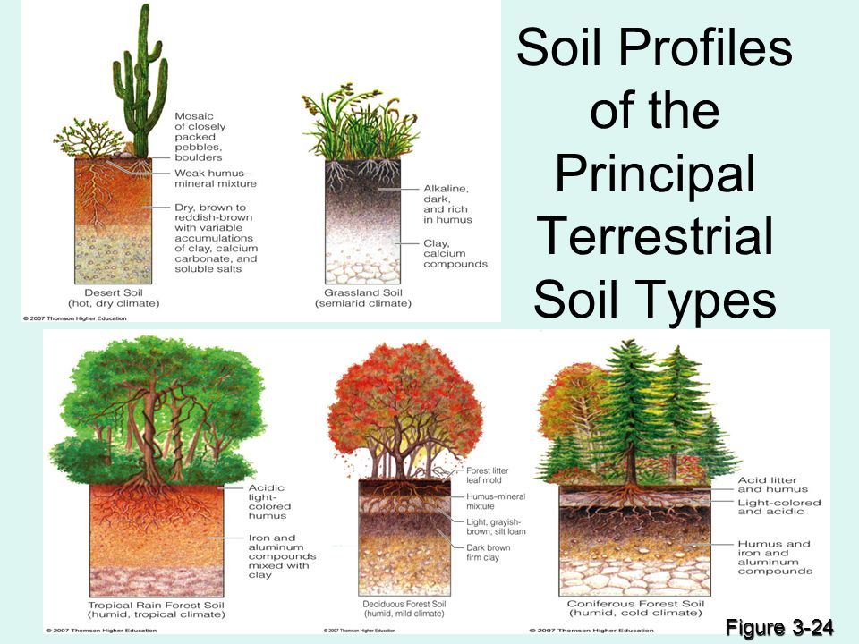 Chapter 15 soils mining ppt video online download for Types of soil resources