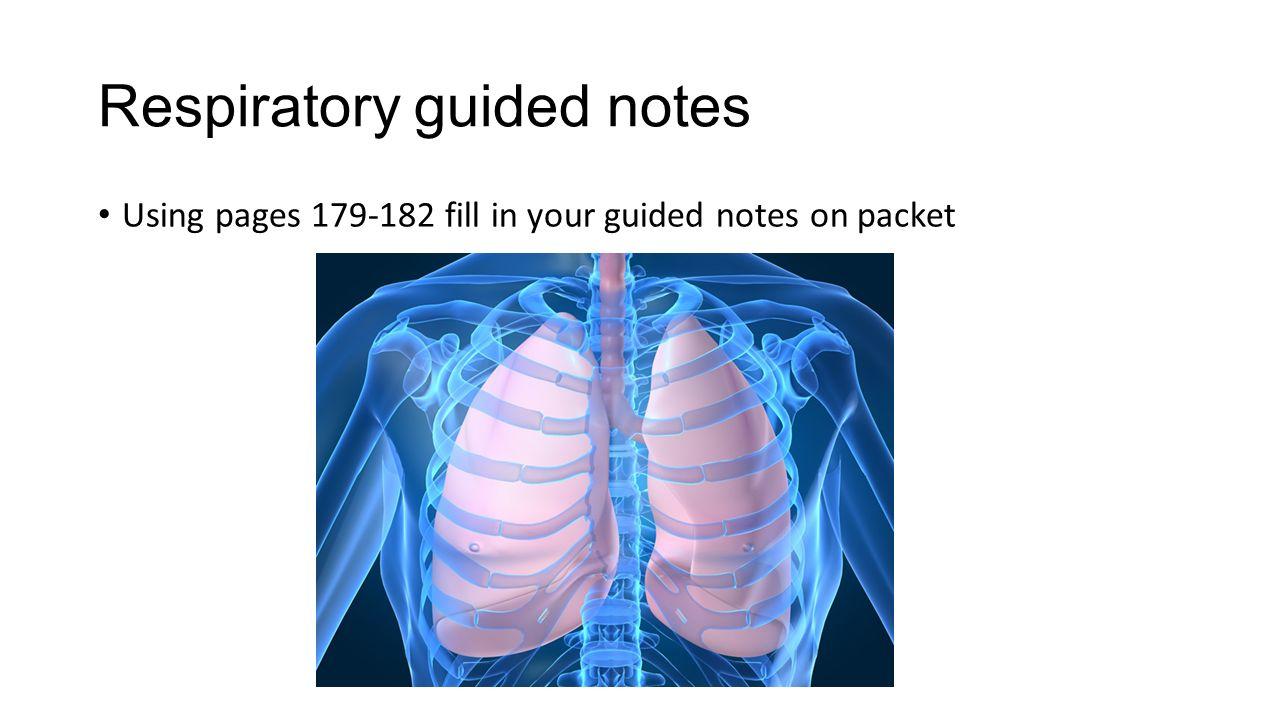 Respiratory study stacks