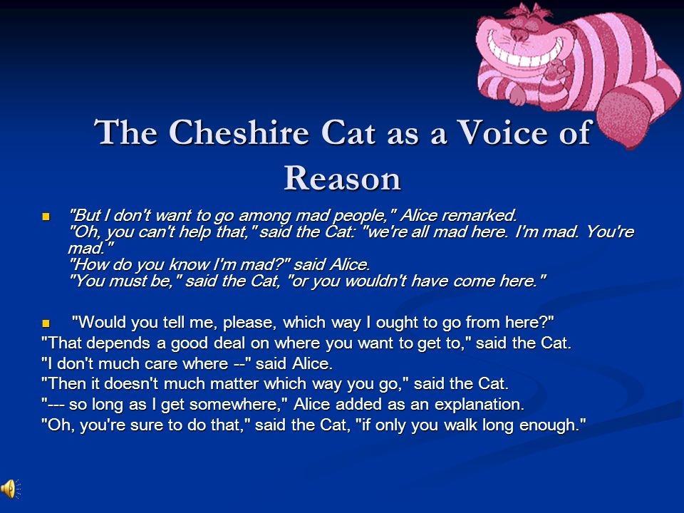 Cheshire Cat It Doesn T Matter Which Way