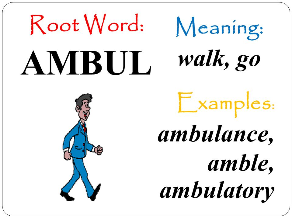 Using Greek And Latin Root Words To Build Vocabulary Ppt