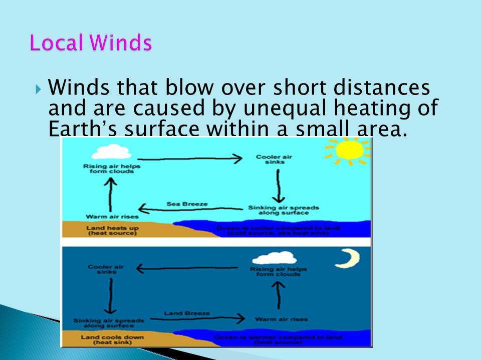 Winds What causes winds?. - ppt video online download