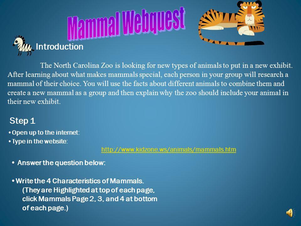 Mammal Webquest Introduction Step 1