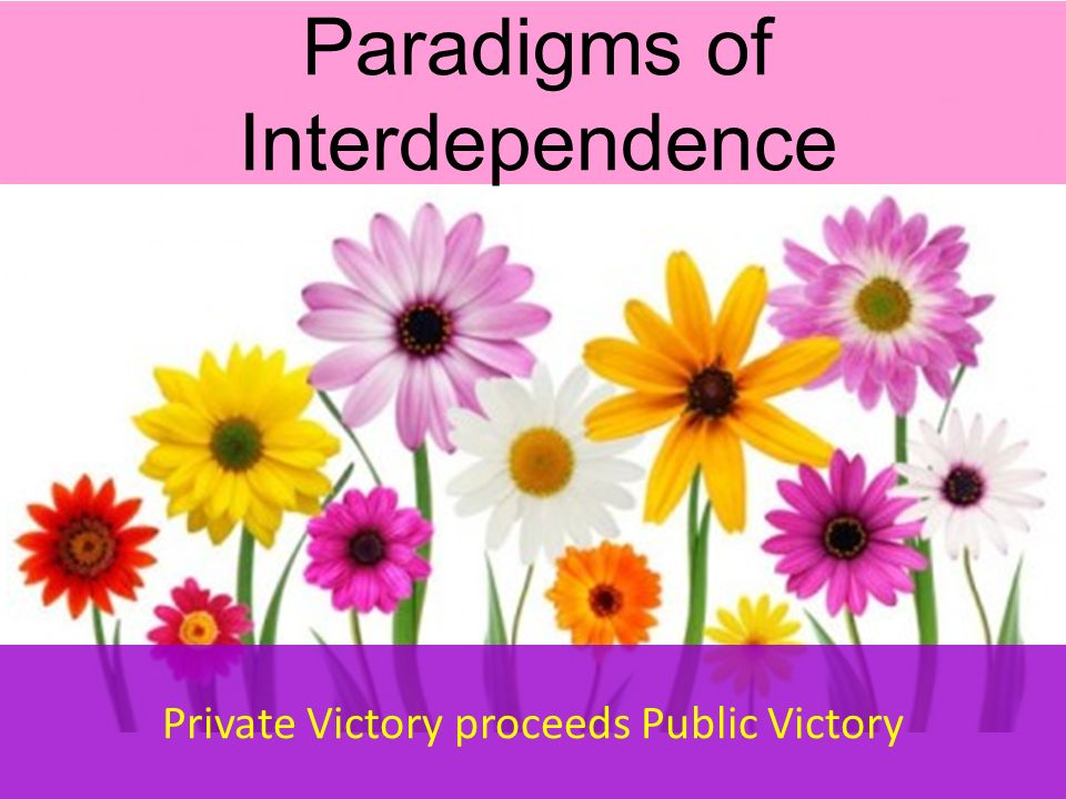 paradigms of interdependence and character and Introduction to sociology/print version  (they are arguably paradigms)  resulting in a strong interdependence between individuals.
