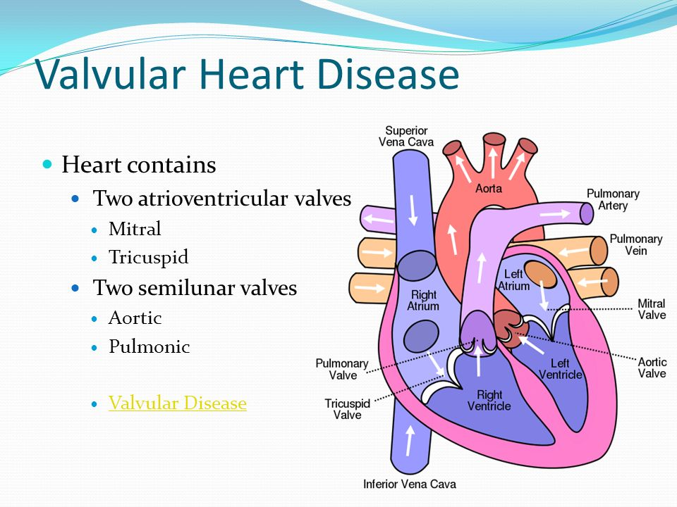valvular heart disease Valvular disease may be unmasked in pregnancy when physiological changes increase demands on the heart women with valvular heart disease require close follow-up during pregnancy, delivery, and postpartum valvular heart disease in pregnancy is rare, but it significantly increases maternal and fetal risk despite an overall decline in the.