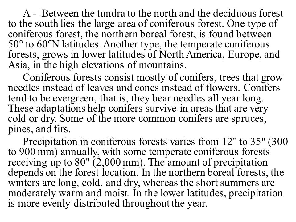 A - Between the tundra to the north and the deciduous forest to the south lies the large area of coniferous forest.