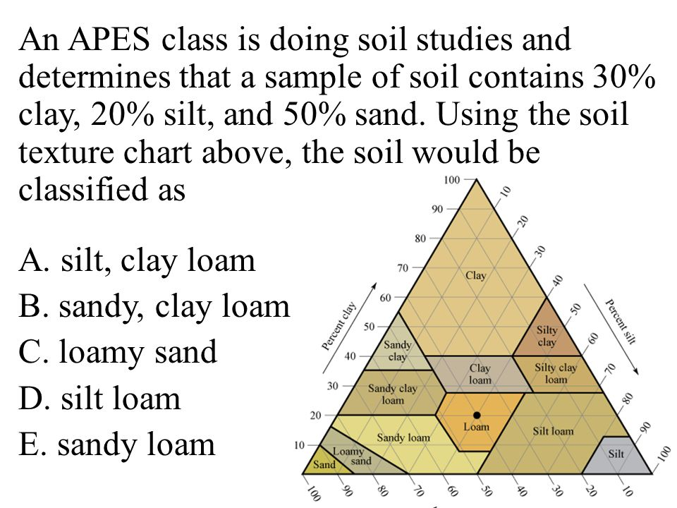 An APES class is doing soil studies and determines that a sample of soil contains 30% clay, 20% silt, and 50% sand.
