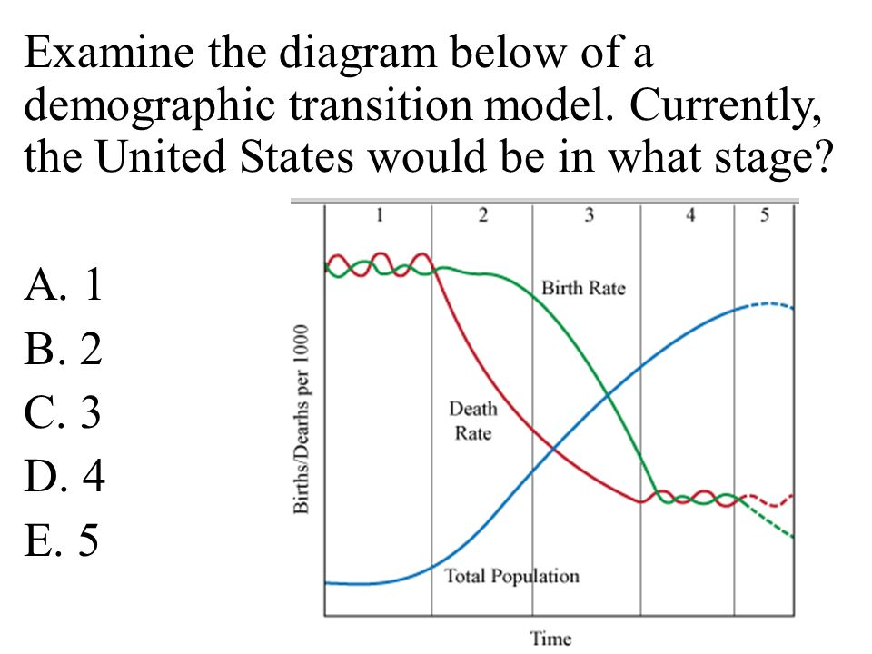 Examine the diagram below of a demographic transition model