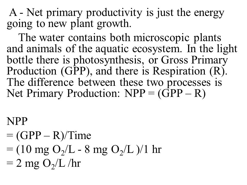 A - Net primary productivity is just the energy going to new plant growth.