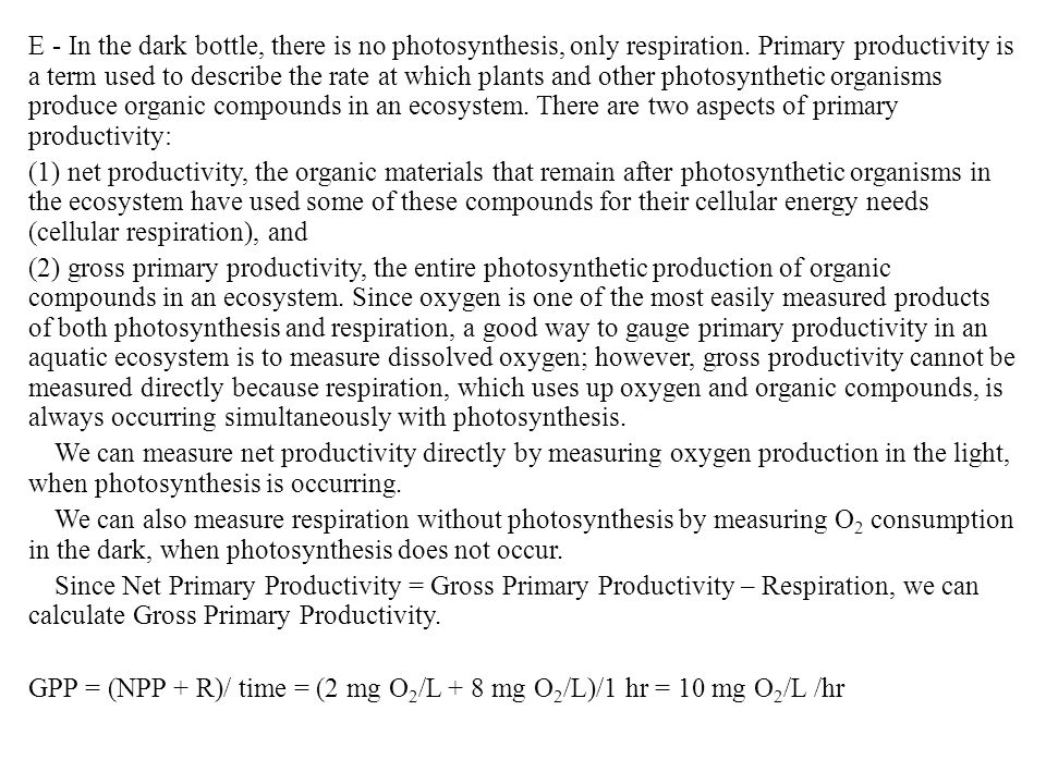 E - In the dark bottle, there is no photosynthesis, only respiration