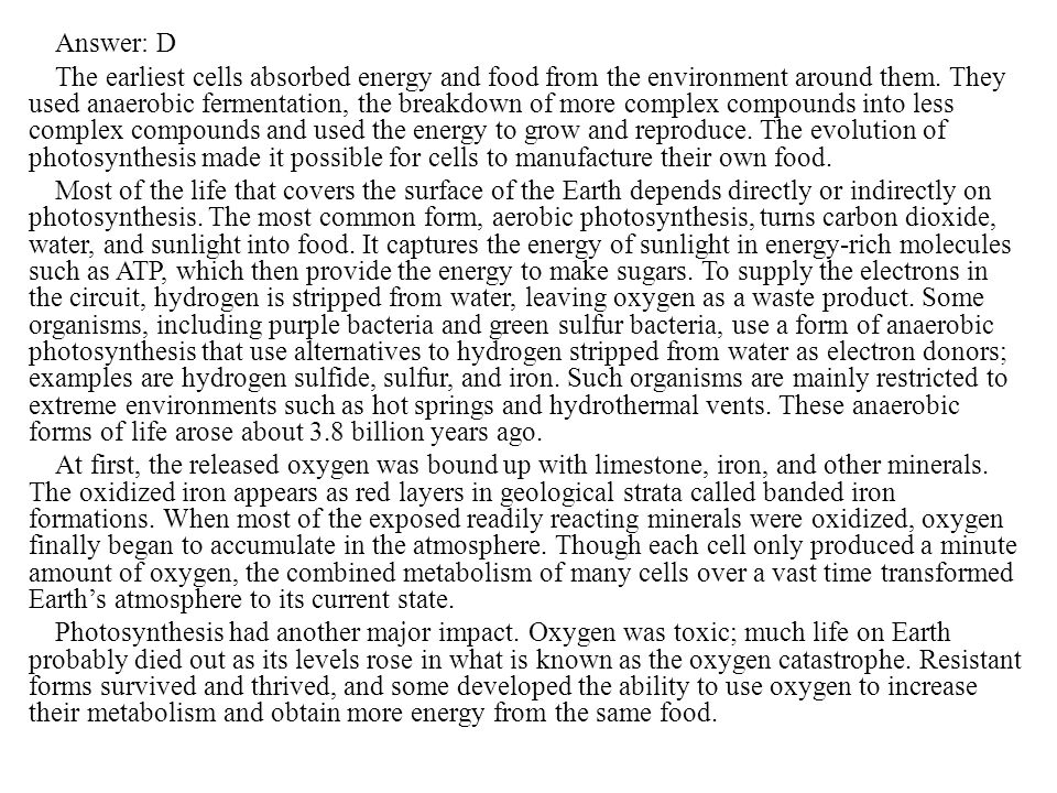 Answer: D The earliest cells absorbed energy and food from the environment around them.