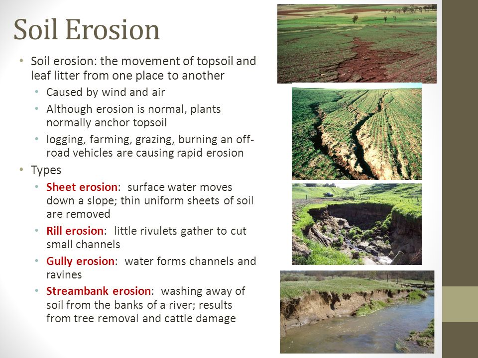 Food and soil resources ppt video online download 21 soil erosion sciox Images