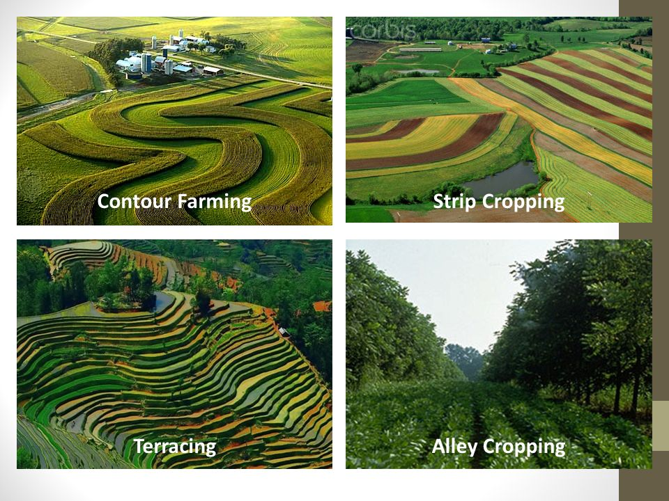 Food and soil resources ppt video online download for What is terracing