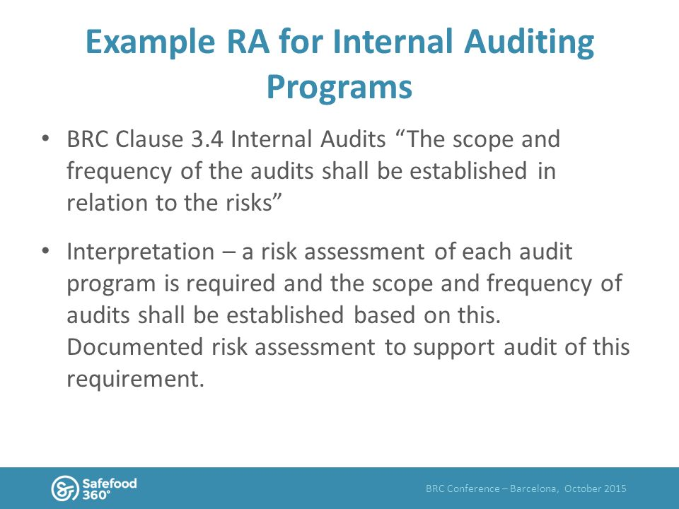 internal audit scope template - what is risk assessment ppt video online download
