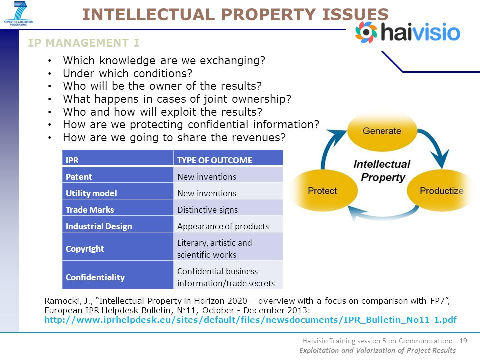 INTELLECTUAL PROPERTY ISSUES