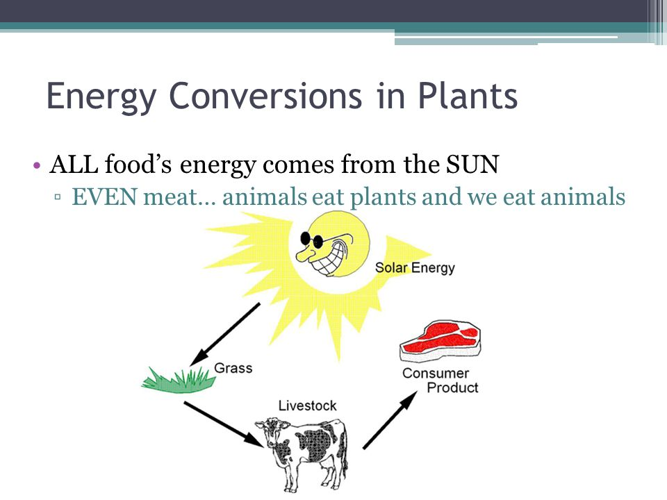 food energy conversion The government conversion factors for greenhouse gas reporting are suitable for  use by uk  from: department for business, energy & industrial strategy.
