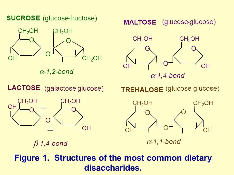 Maltose Lactose Sucrose Glucose And Fructose Structures ...