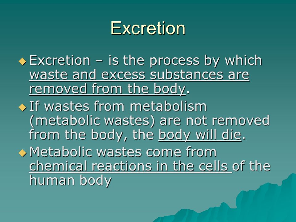 understanding the process of metabolism in the human body Metabolism is the process by which your body converts what you eat and drink  into energy during this complex biochemical process, calories.