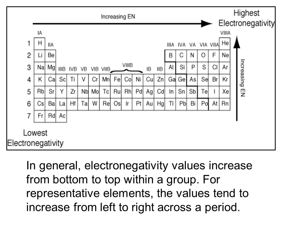 The periodic table chapter ppt video online download in general electronegativity values increase from bottom to top within a group gamestrikefo Images