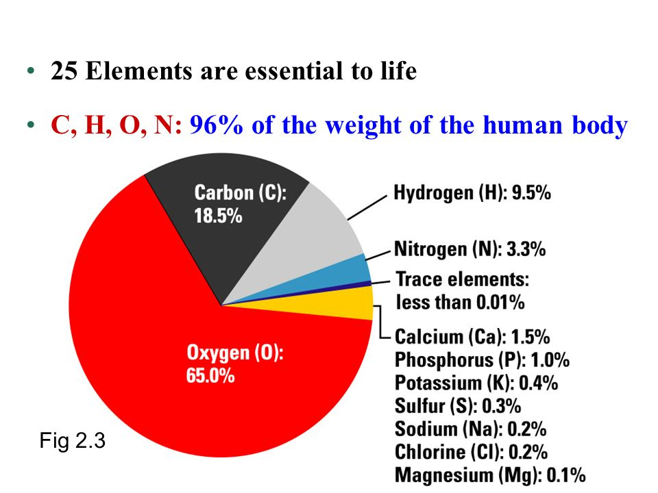 Unifying Characteristics Of Life Ppt Video Online Download