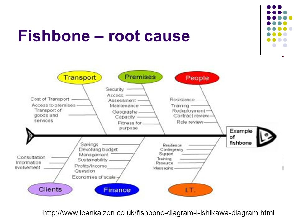 Quality and performance improvement ppt download 81 fishbone root cause ccuart Choice Image