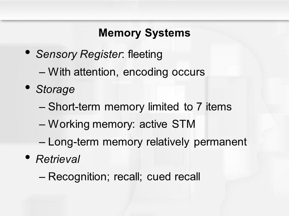 Supplements for memory students picture 5
