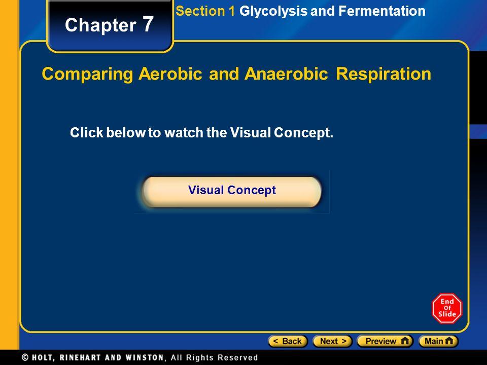 aerobic and anaerobic fermentation pdf