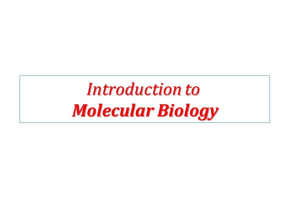 introduction to molecular biology This course introduces the basic computational methods used to understand the cell on a molecular level it covers subjects such as the sequence alignment algorithms: dynamic programming.