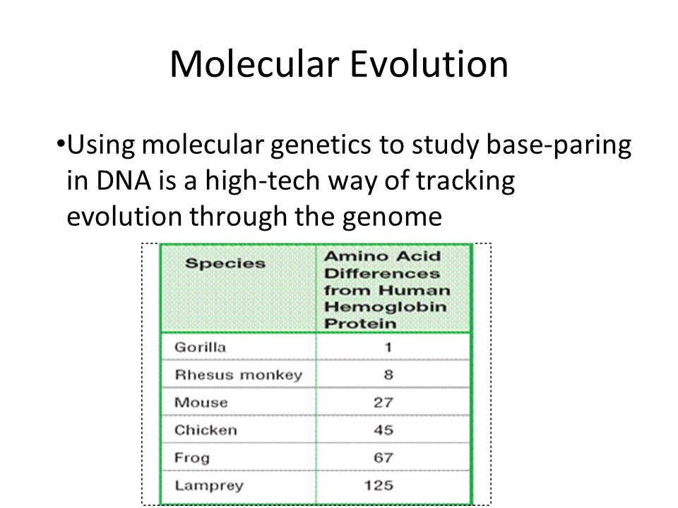 an analysis of the genetics and the concept of evolution The renewed focus on race and genetics suggests that an analysis of the complex relationship biology and the evolution of the race concept in 20th century.