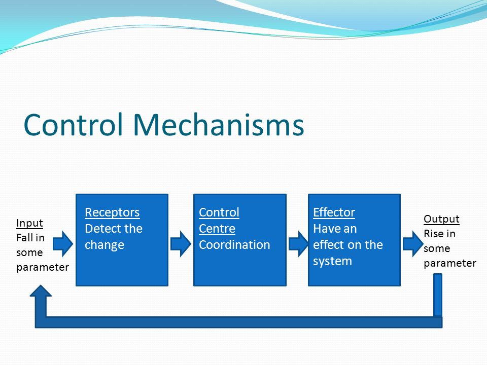 control mechanisms 1 Case study 1: homeostatic control mechanisms a identify what each part of a homeostatic mechanism is/does: 1 variable: it's the condition being maintained such as blood pressure, blood sugar, etc  for the next 2 scenarios, identify each part of the homeostatic mechanism described 1 connie is a long distance runner.