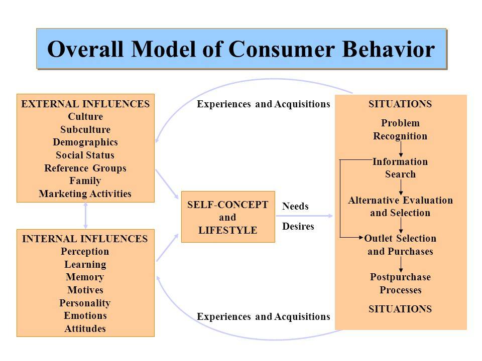 Overall Model of Consumer Behavior