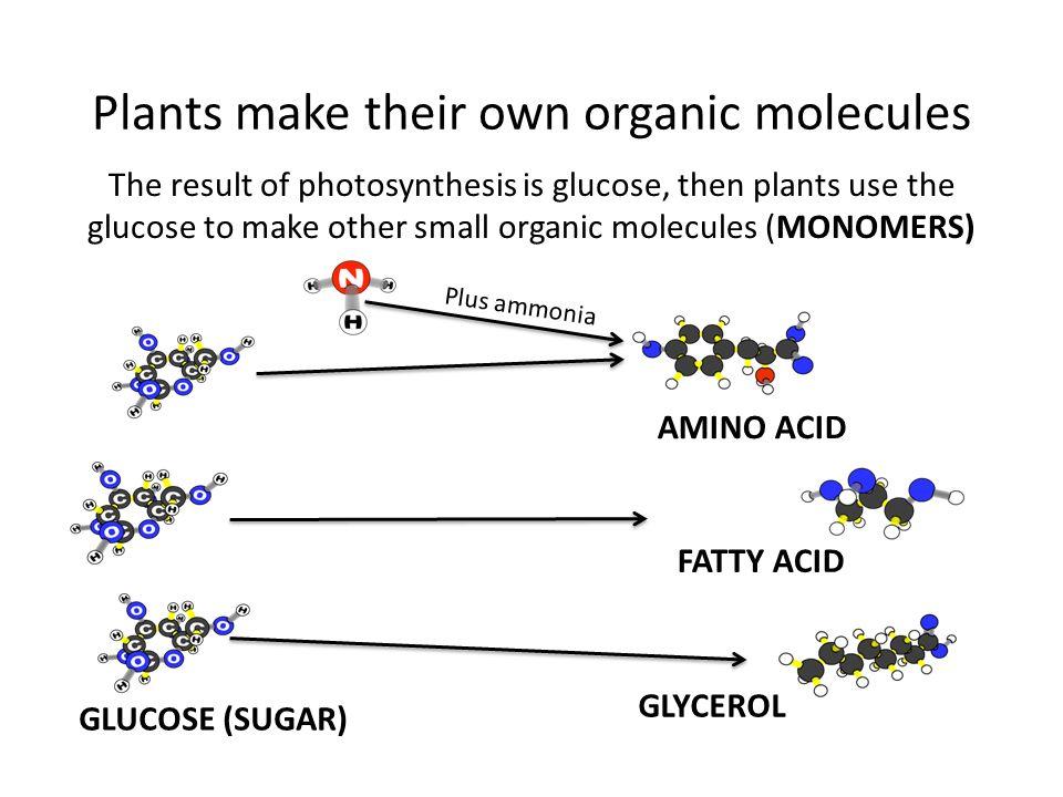 how to make organic water
