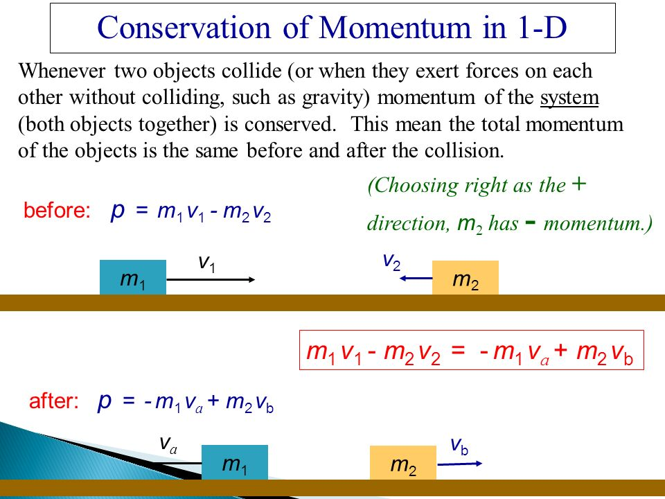 Law of Conservation of Momentum Lab Answers