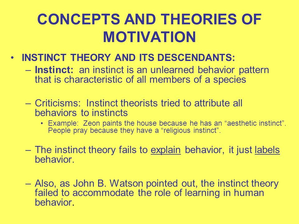 Three Major Theories of Motivation