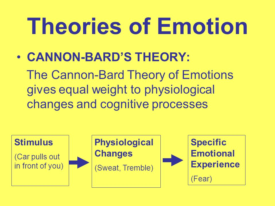 theories of emotions Theories of stress, conflict & emotions in psychology on eruptingmind | increases in arousal are generally associated with stress, which occurs as a result of being exposed to a stressor (something that causes stress).