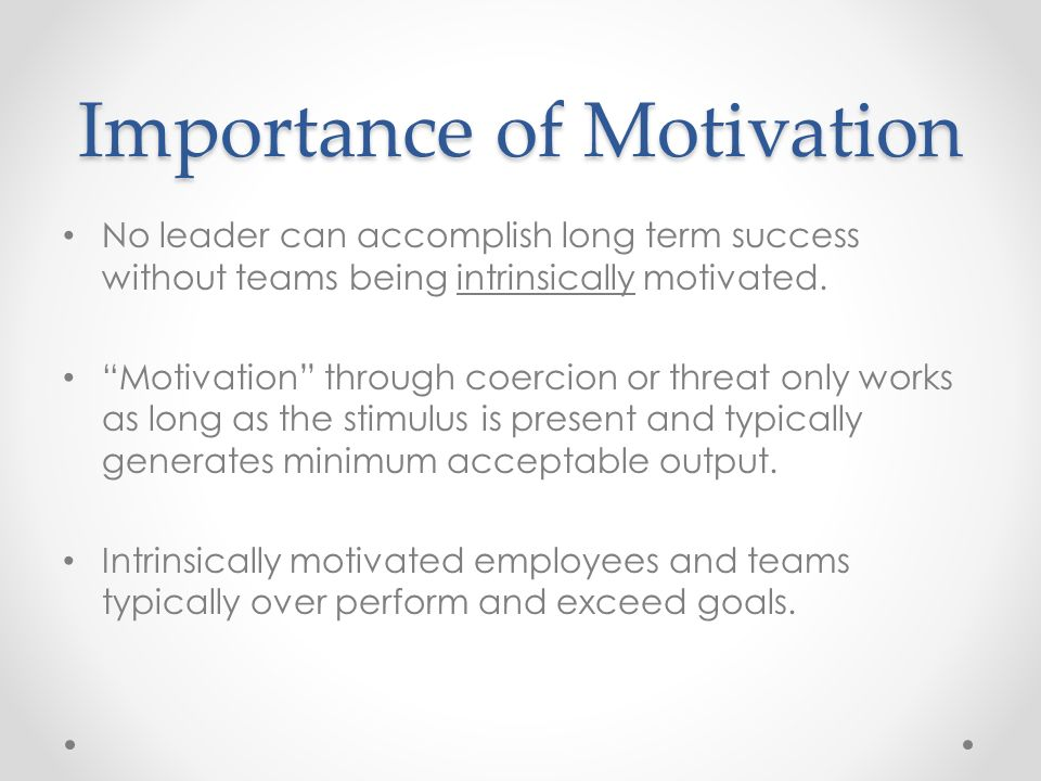 What Is the Role of Motivation in Organizational Behavior?