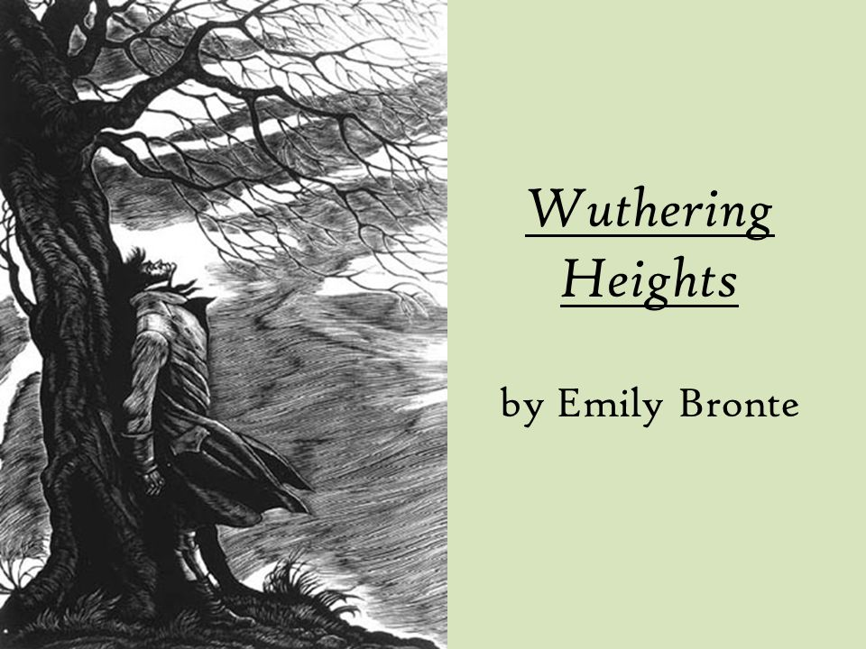 an analysis of the romanticism in the novel wuthering heights by emily bronte Wuthering heights has 1,065,664 that emily bronte purposely implements the relationship now best remembered for her only novel wuthering heights.