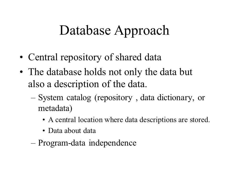 Database Approach Central repository of shared data