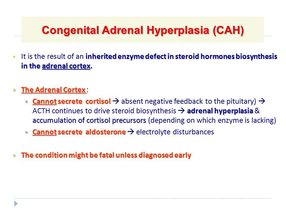 adrenal steroids pdf