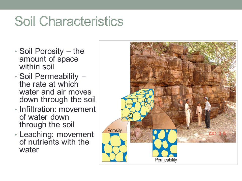 Food soil pest management ppt video online download for What are soil characteristics